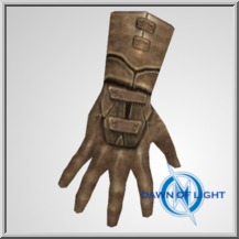 Leather Gloves (ID: 34)