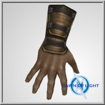 Hard Leather Gloves (ID: 39)